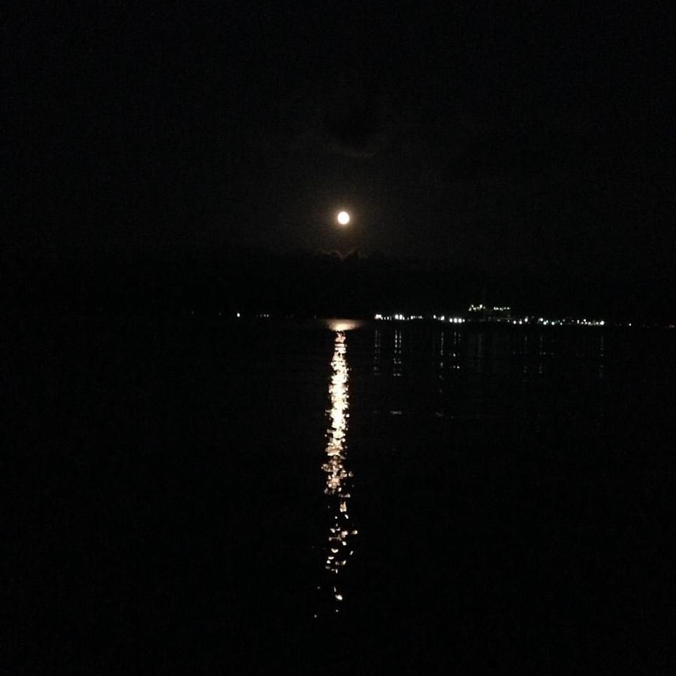 月の道.png